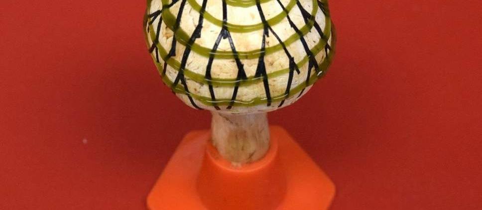 Με 3D εκτύπωση γίνονται τα μανιτάρια βιονικά για την παραγωγή ηλεκτρισμού!